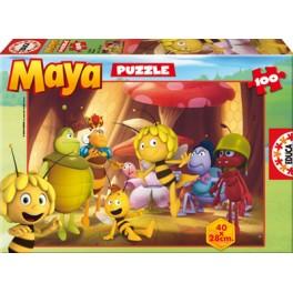 100 La Abeja Maya Educa
